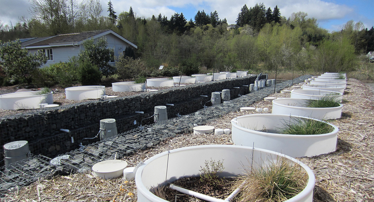 Washington Stormwater Center