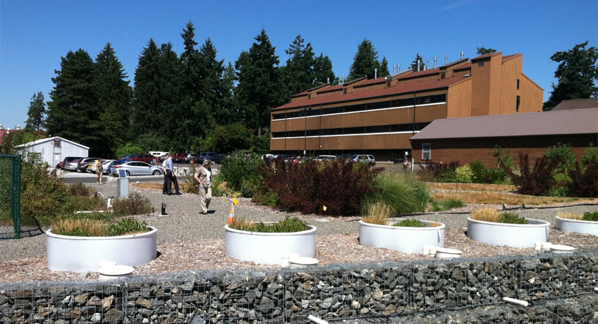 Washington Stormwater Center