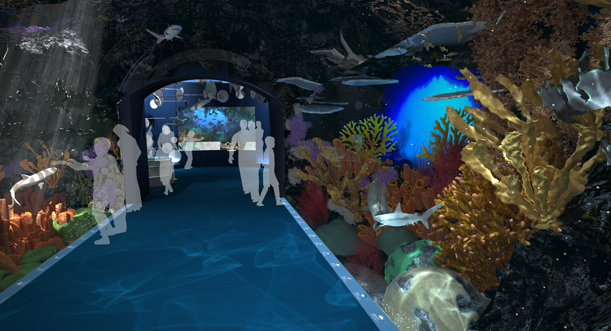 Ocean Wonders: Sharks! New York Aquarium