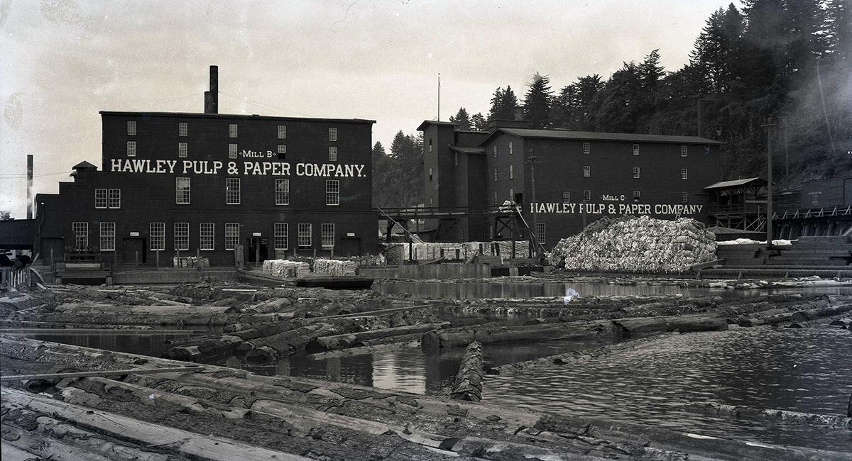 Willamette Falls 1918