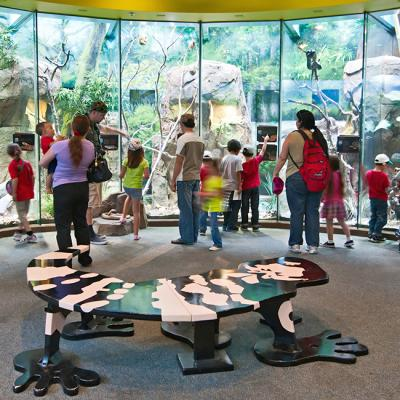 LA Zoo Design Amphibians, Invertebrates and Reptiles