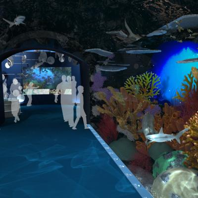 Ocean Wonders: Sharks! New York Aquarium