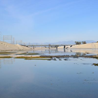 Lower LA River
