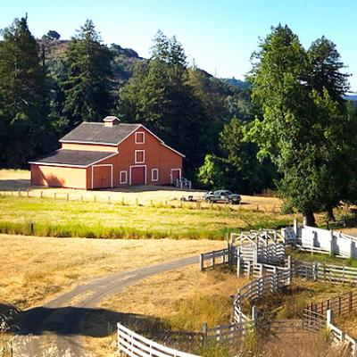 Red Barn Site in Redwood City