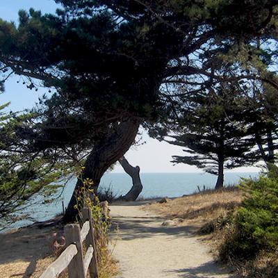 Coyote Point Eastern Promenade