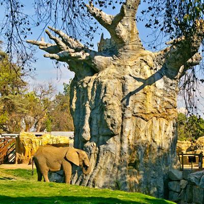 African Adventure at Fresno Chaffee Zoo Exhibit Design