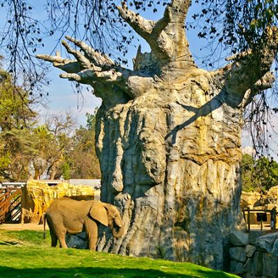 African Adventure at Fresno Chaffee Zoo
