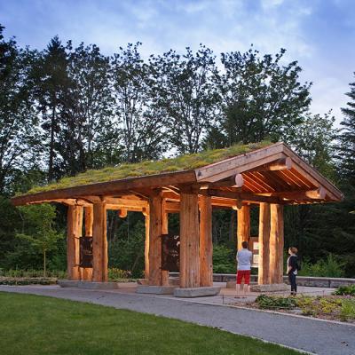 Washington Park Arboretum Pacific Connections Garden